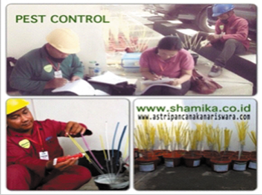 jasa-pest-control2